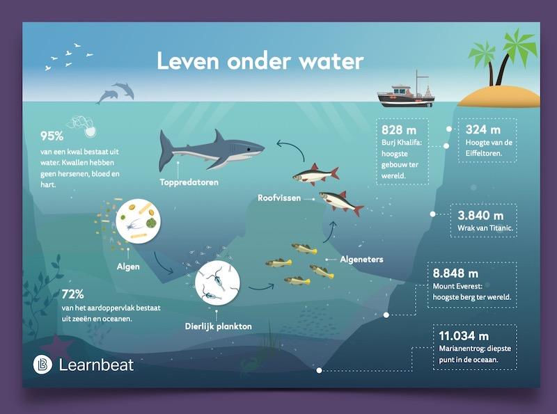 Educatieve-poster-onderwijs-biologie-leven-onder-water