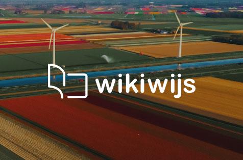Logo Wikiwijs Nederlands in Learnbeat