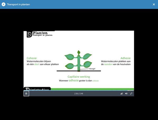 opgave-uit-examentrainer-biologie-video-uitleg-over-transport-in-planten-in-learnbeat